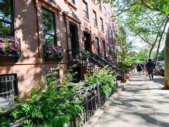 Sabores de los barrios de Nueva York