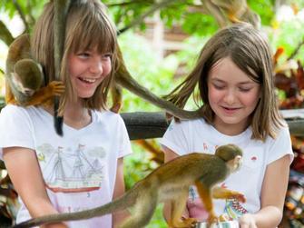 Monkeyland + visita fabrica de aceite de coco y transporte desde Punta Cana