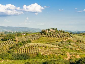 Tour de lo mejor del Chianti con dos degustaciones de vino, tres pueblos medievales y cena toscana