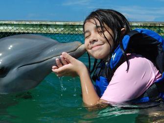 Dolphin Explorer Funtastic con transporte desde Punta Cana