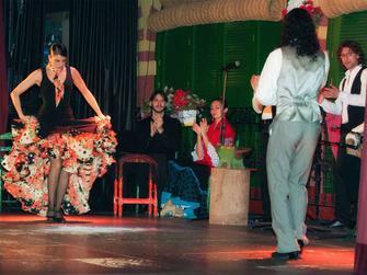Espectáculo de flamenco en el Palacio Andaluz