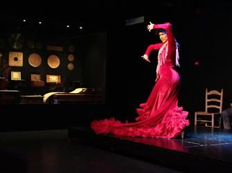 Jaleo Flamenco - Espectáculo en el Museo Interactivo de la Música