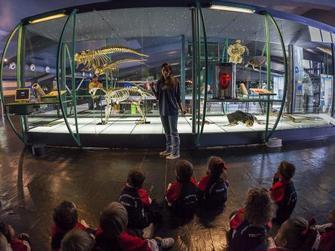 Entrada Museo Elder de la Ciencia y la Tecnología