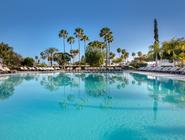 Occidental Margaritas