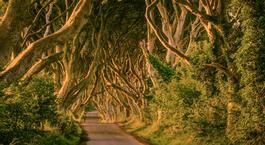 Irlanda: Ruta de Juego de Tronos por la Isla Esmeralda